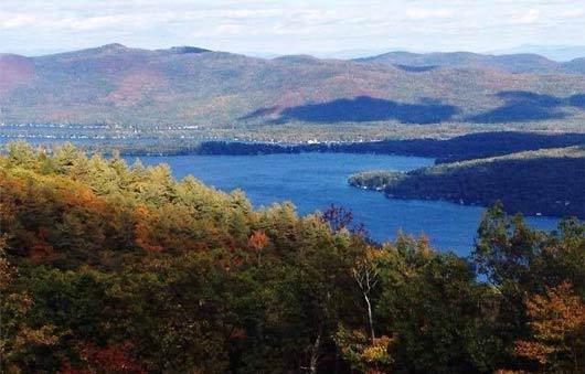 prospect Mt View